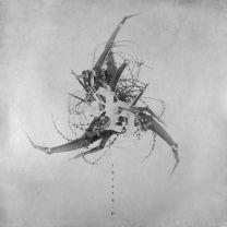 AD HOMINEM - Theory:0 (White vinyl)