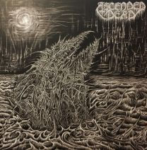 ASCENDED DEAD - Abhorrent Manifestation