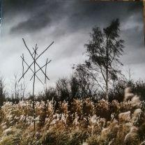 WIEGEDOOD - De Doden Hebben Het Goed (Gold clear vinyl)