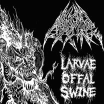 ABHOMINE - Larvae Offal Swine